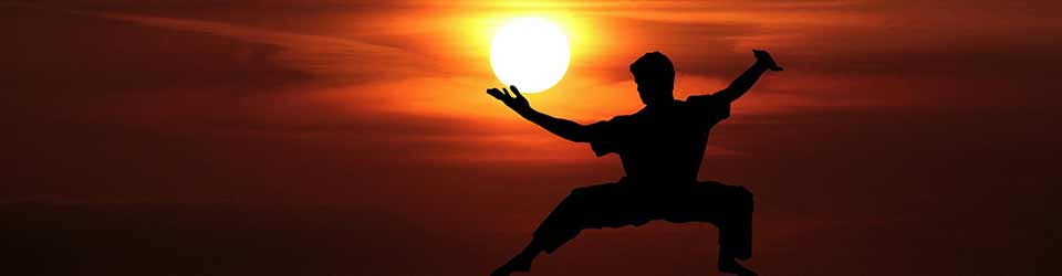 THE-WAY-TO-MASTER-THE-ART-OF-KUNG-FU